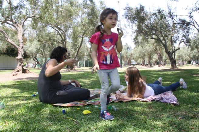 dopamina-picnic5